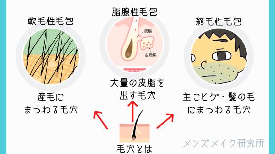 毛穴の種類説明
