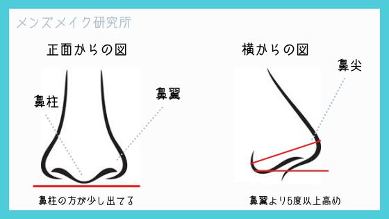 鼻の図説明